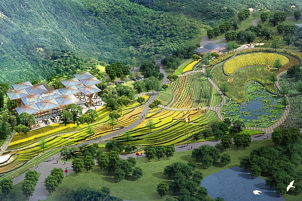 5个适合农村发展的项目推荐